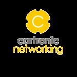 Cartronic Group - División redes